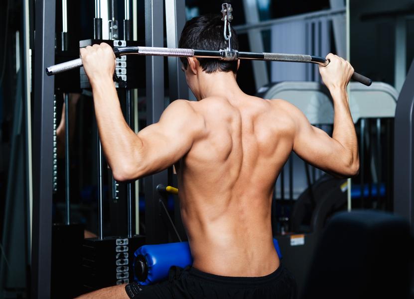 Musculation entrainement dorsal